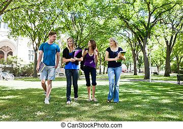 diákok, csoport, főiskola