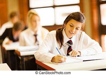 diákok, középiskola, csoport, tanulás