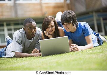 diákok, laptop, főiskola, használ, pázsit, egyetem területe
