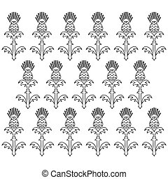 dia independência, de, scotland., 24, june., ornamento, de, flores, de, um, thistle., preto branco