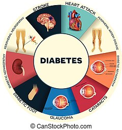 Diabetes complications affected organs. Diabetes affects nerves, kidneys, eyes, vessels, heart, brain and skin. Detailed round colorful info graphic.