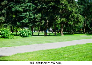 diagonal park lawn landscape background hd