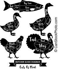 diagram., 肉, 肉屋, ベクトル, 切口, ガイド, illustrations.
