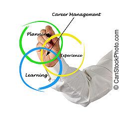 diagram, av, karriär, administration