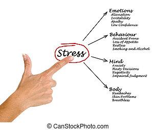 diagram, av, stressa, konsekvenser