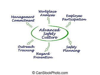 diagram, cultuur, veiligheid, geavanceerd