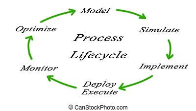 diagram, cykl, sieć, życie, zastosowanie