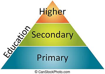 diagram, kierownictwo, handlowy, wykształcenie