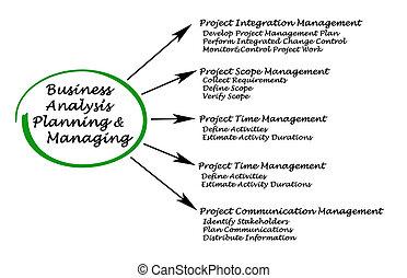 Diagram of Business Analysis