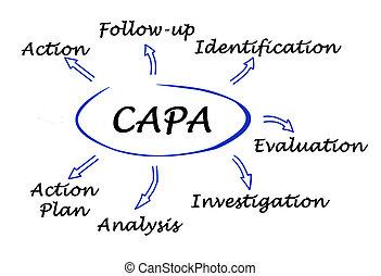 Diagram of CAPA