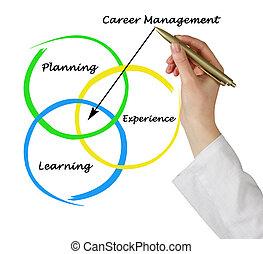 Diagram of career management