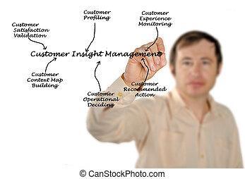 diagram of Customer Insight Management
