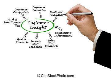 Diagram of Customer Insight