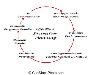 diagram of Effective Succession Planning