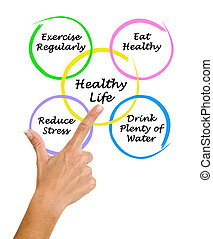 Diagram of healthy life