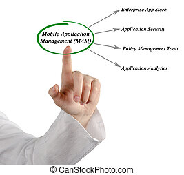 Diagram of Mobile Application Management