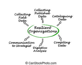 Diagram of Resilient Organizations