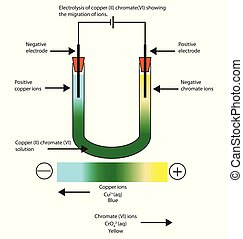 Diagram of the electrolysis of copper (II) chromate (VI)...