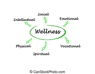 Diagram of wellness