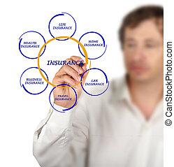 diagram, presenterande, försäkring