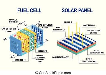 diagram., processus, lumière, cellule, électricité, carburant, convertir
