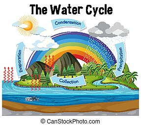Diagram showing water cycle with rainfall and ocean