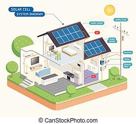 diagram., system, cell, vektor, sol, illustrations.