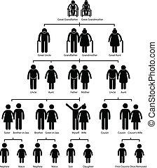 diagram, träd, familj, genealogi