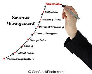 diagram, van, inkomsten, management
