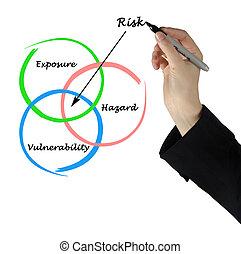 diagram, van, verantwoordelijkheid