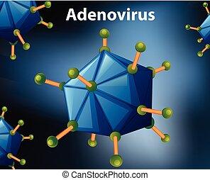 diagrama, cierre, adenovirus, arriba