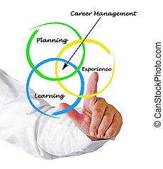 diagrama, de, carrera, dirección