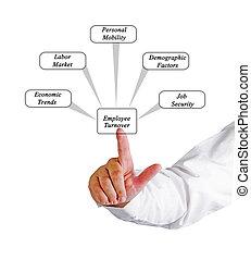diagrama, de, empregado, volume de negócios