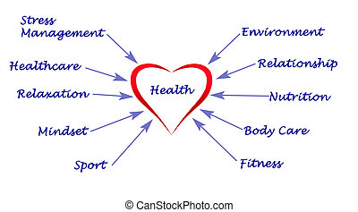 diagrama, de, saúde