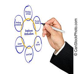 diagrama, empleado, motivación
