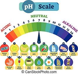 diagrama, escala, alcalino, ilustración, examples., neutral,...