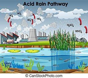 diagrama, fábrica, agua de lluvia, ácido, camino