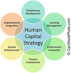 diagrama, humano, empresa / negocio, capital