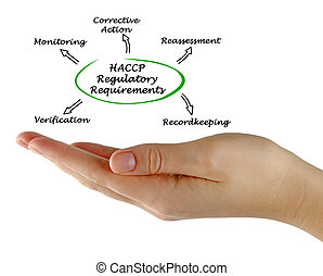 diagrama, regulatory, requisitos, haccp