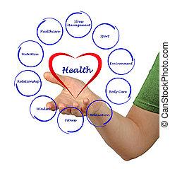 diagrama, salud