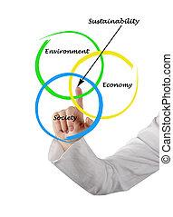diagrama, sostenibilidad, presentación