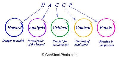 diagramm, von, haccp, regulatory, anforderungen