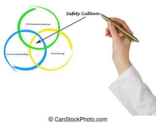diagramm, von, sicherheit, kultur