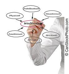 diagramma, di, wellness