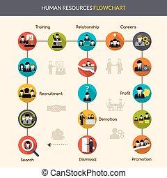 diagramma flusso, risorse umane