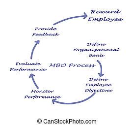 diagramma, processo, mbo
