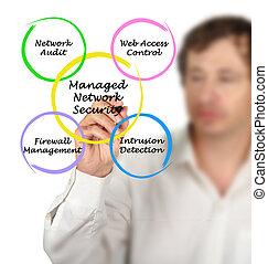 diagramma, sicurezza, amministrato, rete
