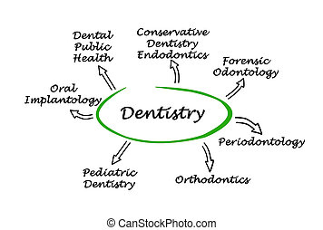 diagramme, art dentaire