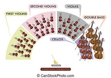 diagramme, bande, symphonique, instrument ficelle