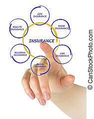 diagramme, femme, présentation, assurance